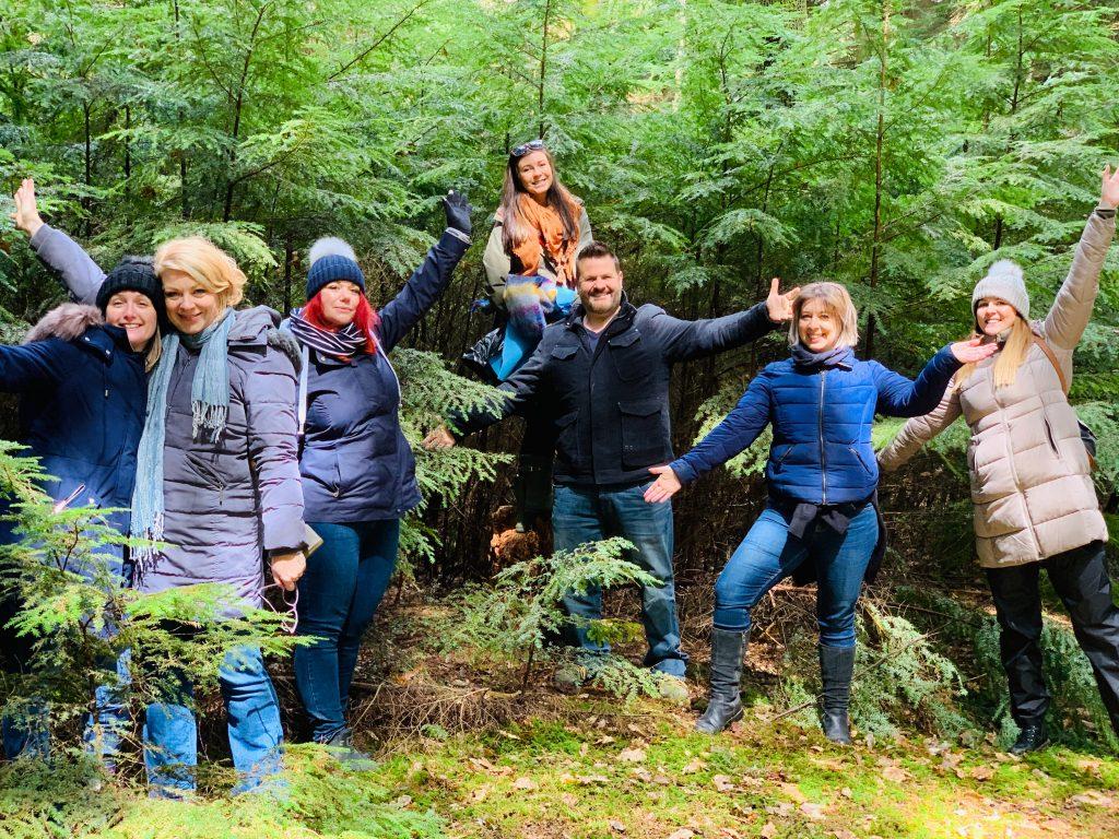 Team building in Newbury : Forest Bathing